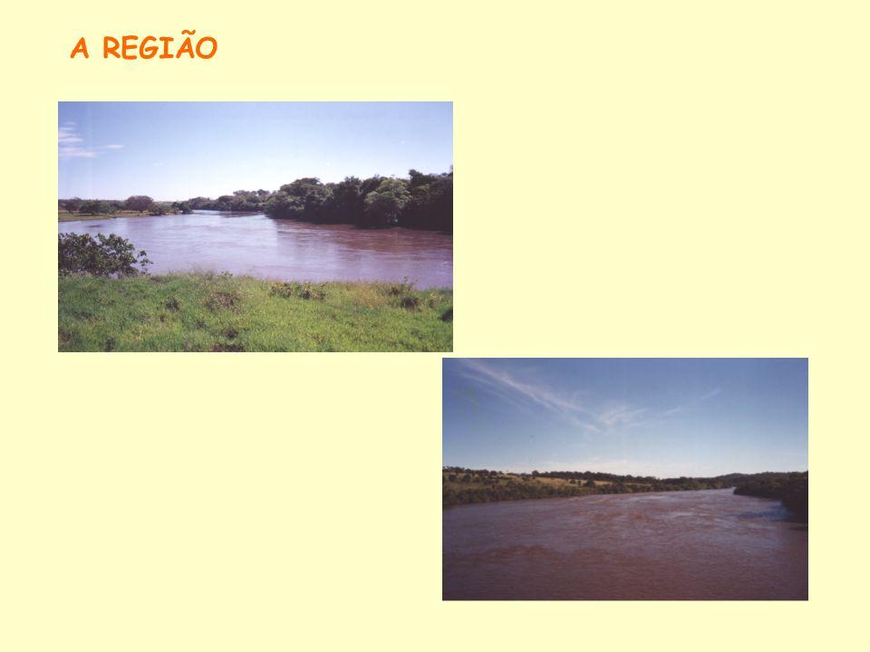 METODOLOGIA Análise eMergética As informações utilizadas neste trabalho foram retiradas do Inventário da bacia do rio Claro, do Estudo de Viabilidade destas barragens e dos Estudos Ambientais disponíveis.