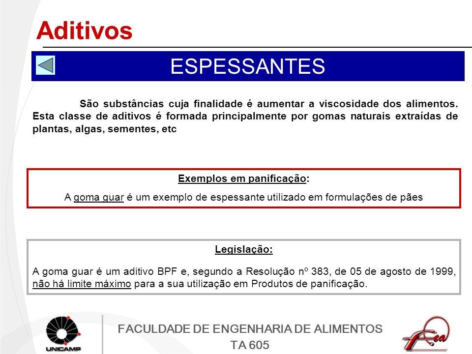 FACULDADE DE ENGENHARIA DE ALIMENTOS TA 605 Aditivos ESPESSANTES São substâncias cuja finalidade é aumentar a viscosidade dos alimentos. Esta classe d