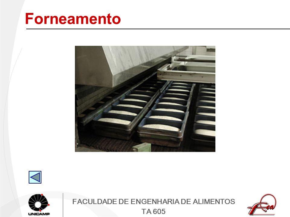 FACULDADE DE ENGENHARIA DE ALIMENTOS TA 605 Forneamento