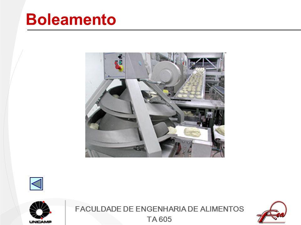FACULDADE DE ENGENHARIA DE ALIMENTOS TA 605 Boleamento