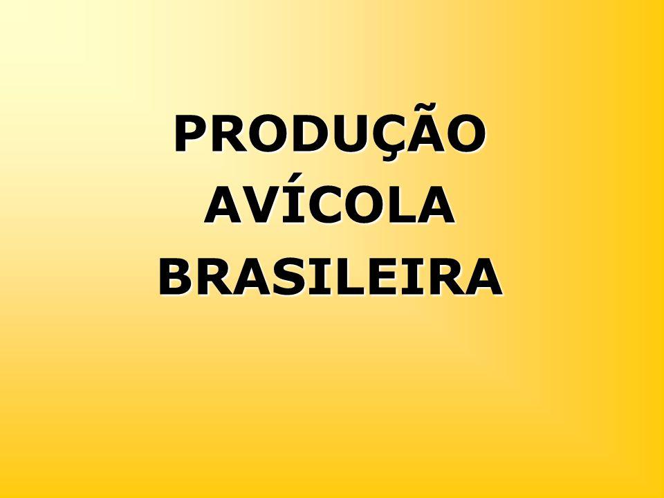 PRODUÇÃO AVÍCOLA BRASILEIRA