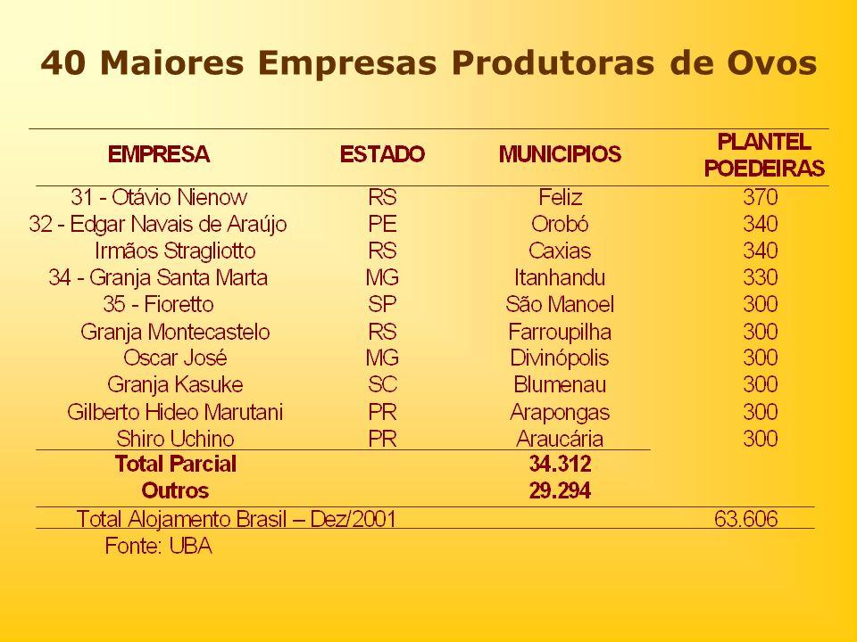 40 Maiores Empresas Produtoras de Ovos