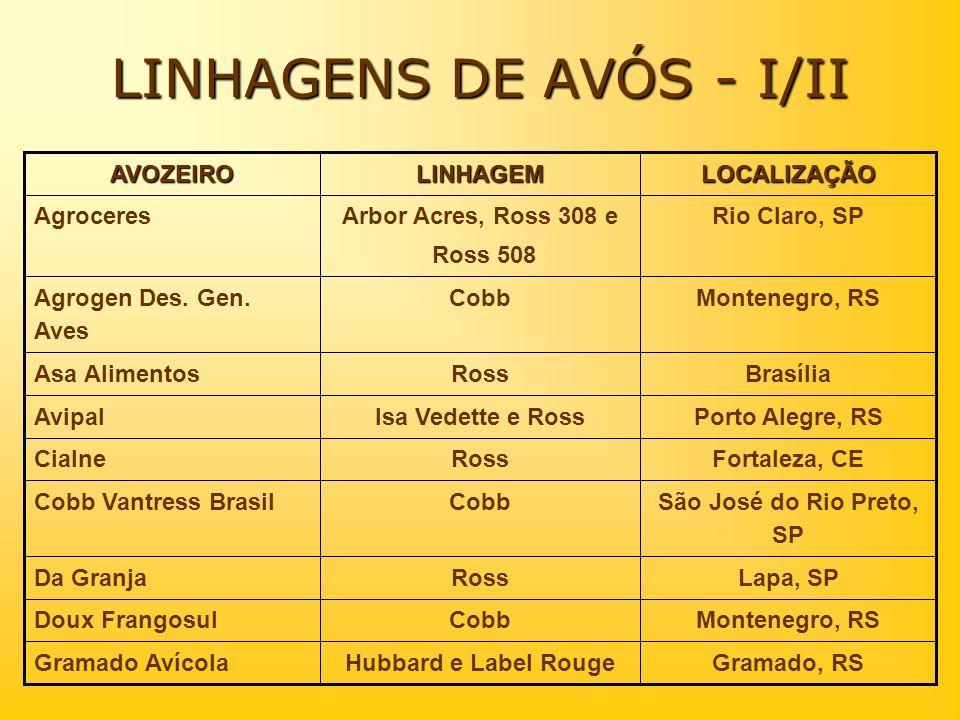 LINHAGENS DE AVÓS - I/II Gramado, RSHubbard e Label RougeGramado Avícola Montenegro, RSCobbDoux Frangosul Lapa, SPRossDa Granja São José do Rio Preto,