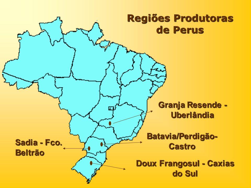 Regiões Produtoras de Perus Granja Resende - Uberlândia Sadia - Fco. Beltrão Doux Frangosul - Caxias do Sul Batavia/Perdigão- Castro