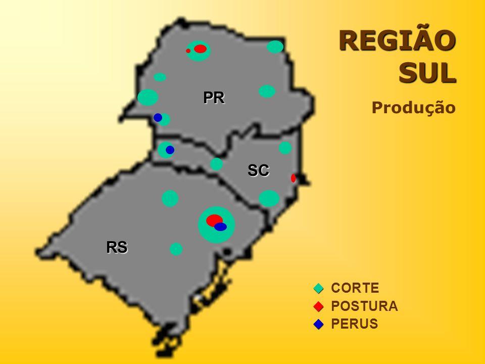 REGIÃO SUL Produção CORTE POSTURA PERUS RS PR SC