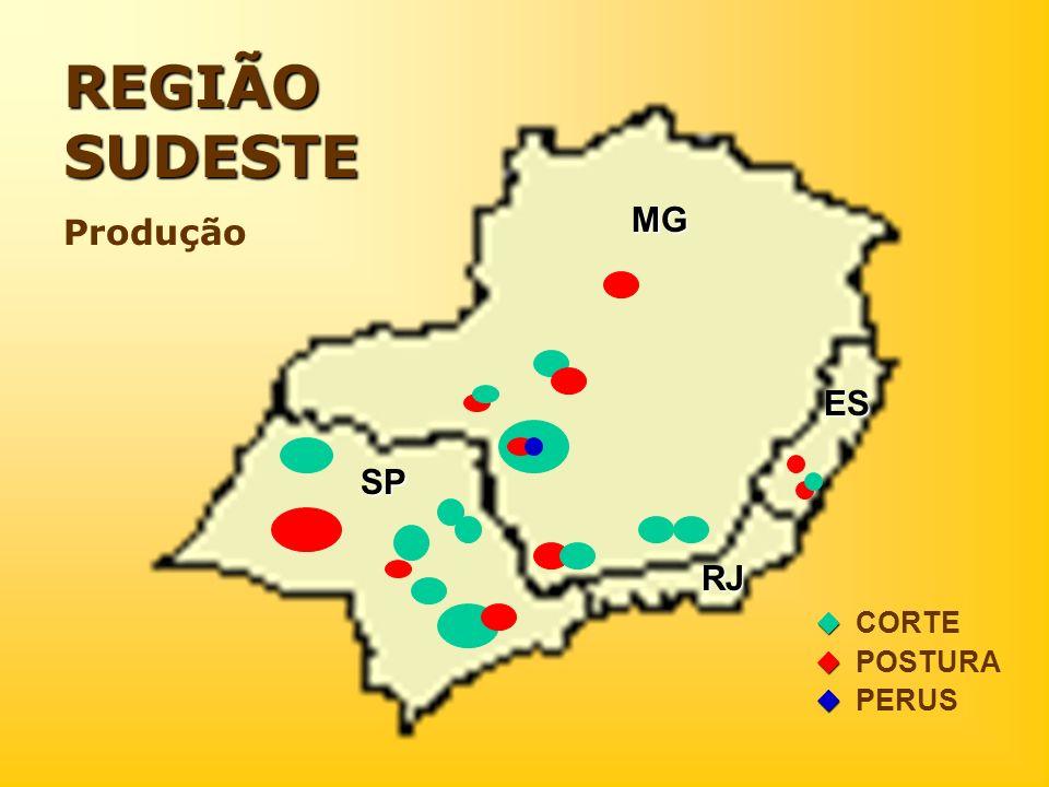 REGIÃO SUDESTE Produção CORTE POSTURA PERUS MG SP RJ ES