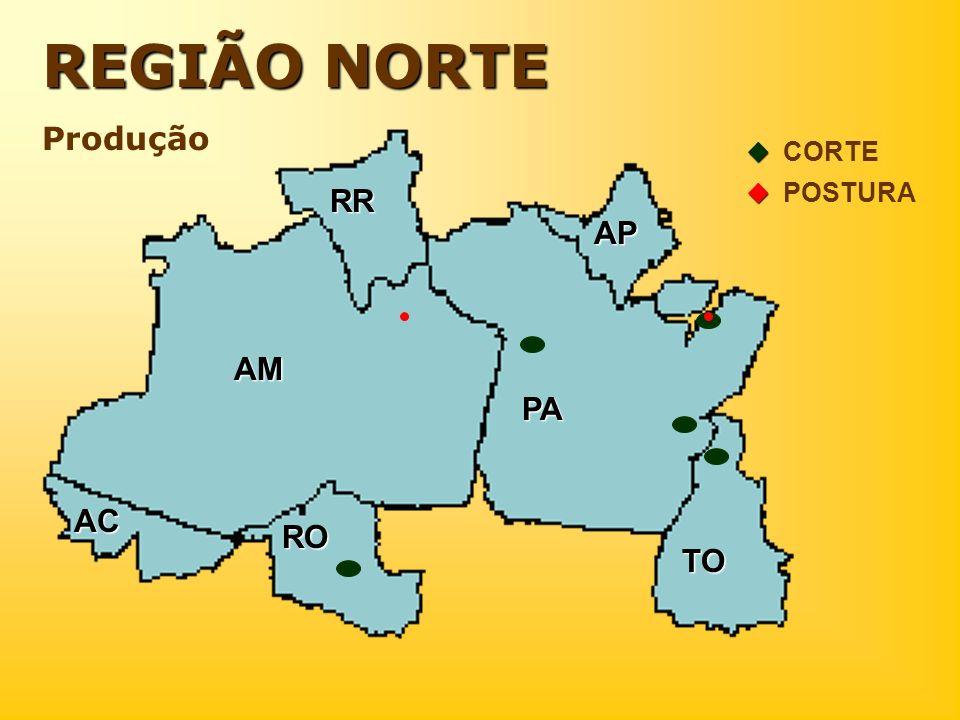 ..... REGIÃO NORTE Produção AM AC RO RR PA AP TO CORTE POSTURA