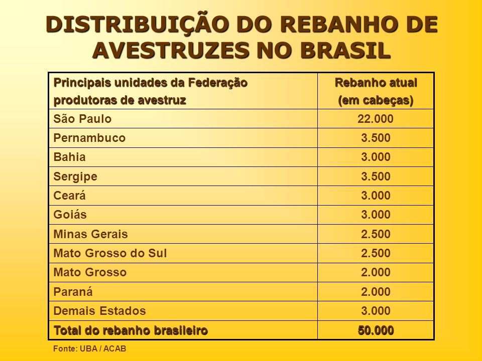 DISTRIBUIÇÃO DO REBANHO DE AVESTRUZES NO BRASIL 50.000 Total do rebanho brasileiro 3.000Demais Estados 2.000Paraná 2.000Mato Grosso 2.500Mato Grosso d