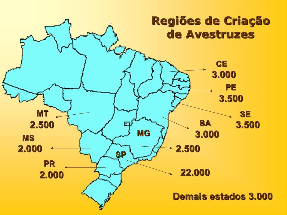 Regiões de Criação de Avestruzes 2.500 MG SP 22.000 3.500 PE 3.000 BA 3.500 SE 3.000 CE 2.000 2.000 PR MS 2.500 MT Demais estados 3.000