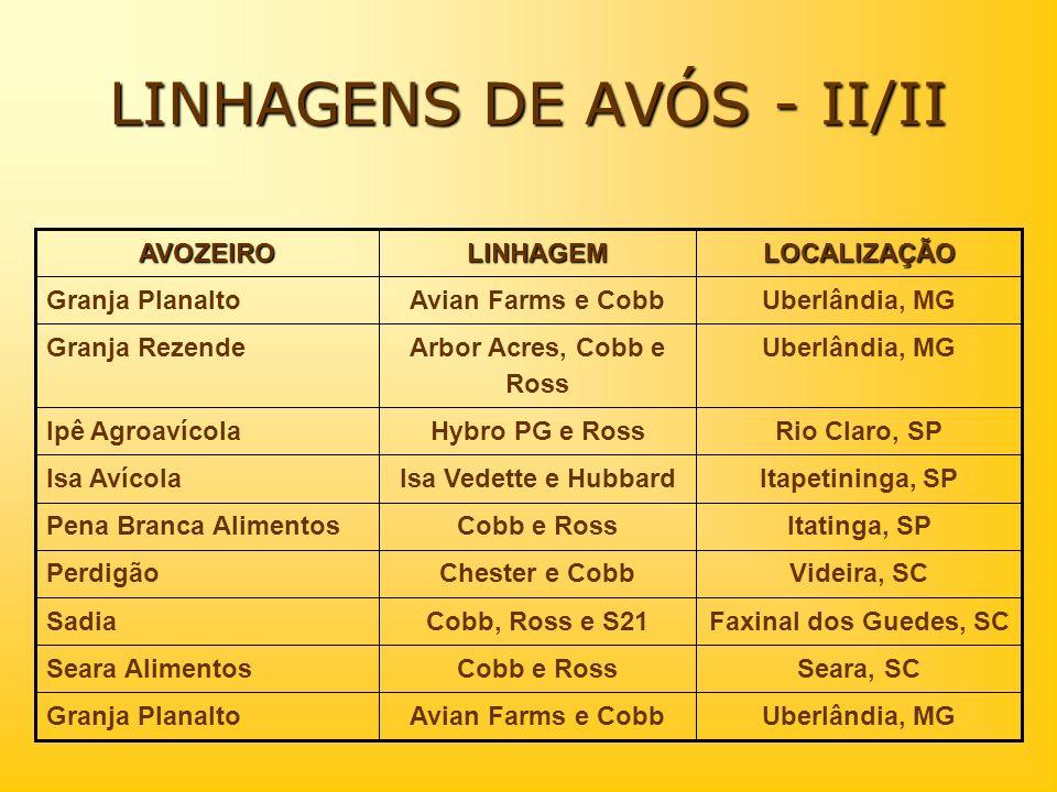 LOCALIZAÇÃOLINHAGEMAVOZEIRO Uberlândia, MGAvian Farms e CobbGranja Planalto Seara, SCCobb e RossSeara Alimentos Faxinal dos Guedes, SCCobb, Ross e S21