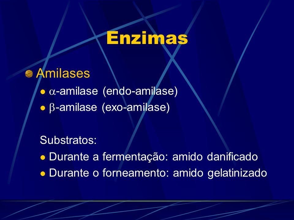 Enzimas Amilases -amilase (endo-amilase) -amilase (exo-amilase) Substratos: Durante a fermentação: amido danificado Durante o forneamento: amido gelat