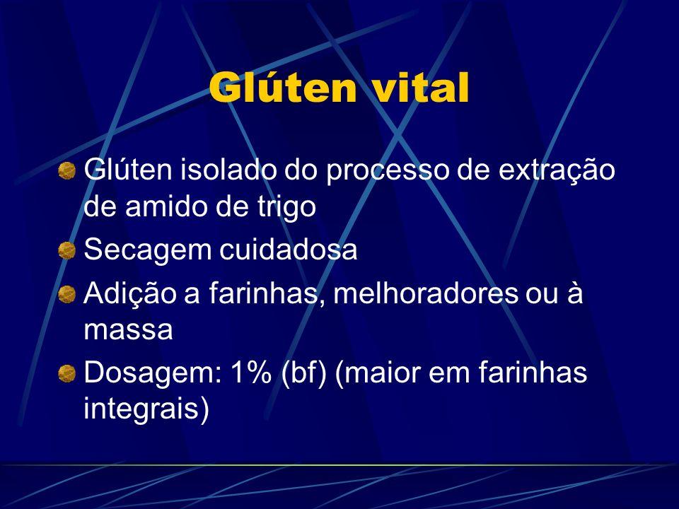 Glúten vital Glúten isolado do processo de extração de amido de trigo Secagem cuidadosa Adição a farinhas, melhoradores ou à massa Dosagem: 1% (bf) (m