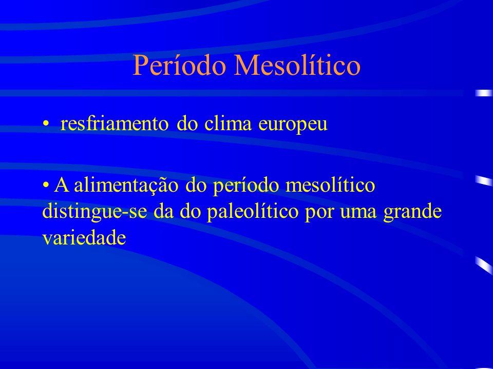 Período Mesolítico resfriamento do clima europeu A alimentação do período mesolítico distingue-se da do paleolítico por uma grande variedade