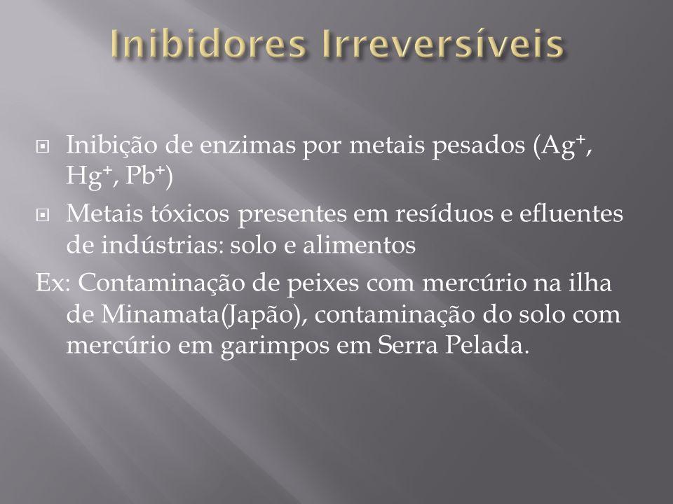 Inibição de enzimas por metais pesados (Ag +, Hg +, Pb + ) Metais tóxicos presentes em resíduos e efluentes de indústrias: solo e alimentos Ex: Contam