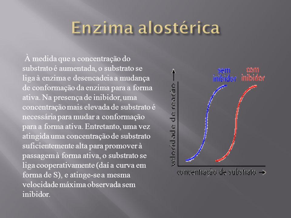 À medida que a concentração do substrato é aumentada, o substrato se liga à enzima e desencadeia a mudança de conformação da enzima para a forma ativa