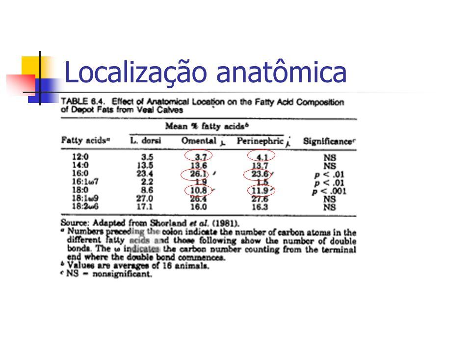 Localização anatômica