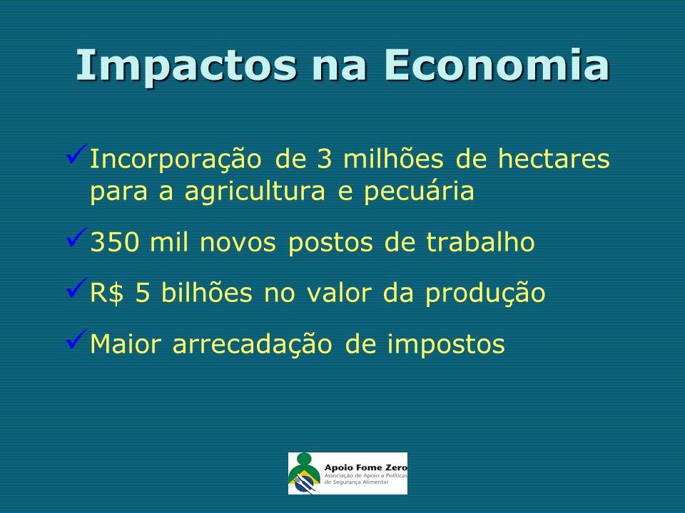Impactos na Economia Incorporação de 3 milhões de hectares para a agricultura e pecuária 350 mil novos postos de trabalho R$ 5 bilhões no valor da pro