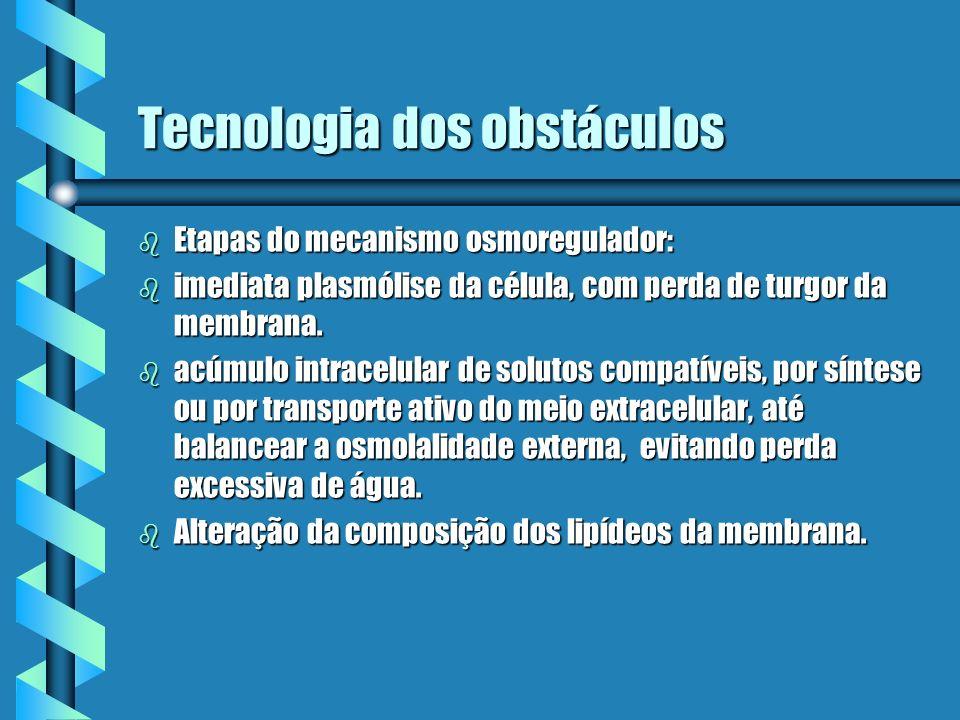 Tecnologia dos obstáculos b Etapas do mecanismo osmoregulador: b imediata plasmólise da célula, com perda de turgor da membrana. b acúmulo intracelula