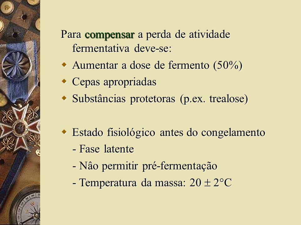 Para compensar a perda de atividade fermentativa deve-se: Aumentar a dose de fermento (50%) Aumentar a dose de fermento (50%) Cepas apropriadas Cepas