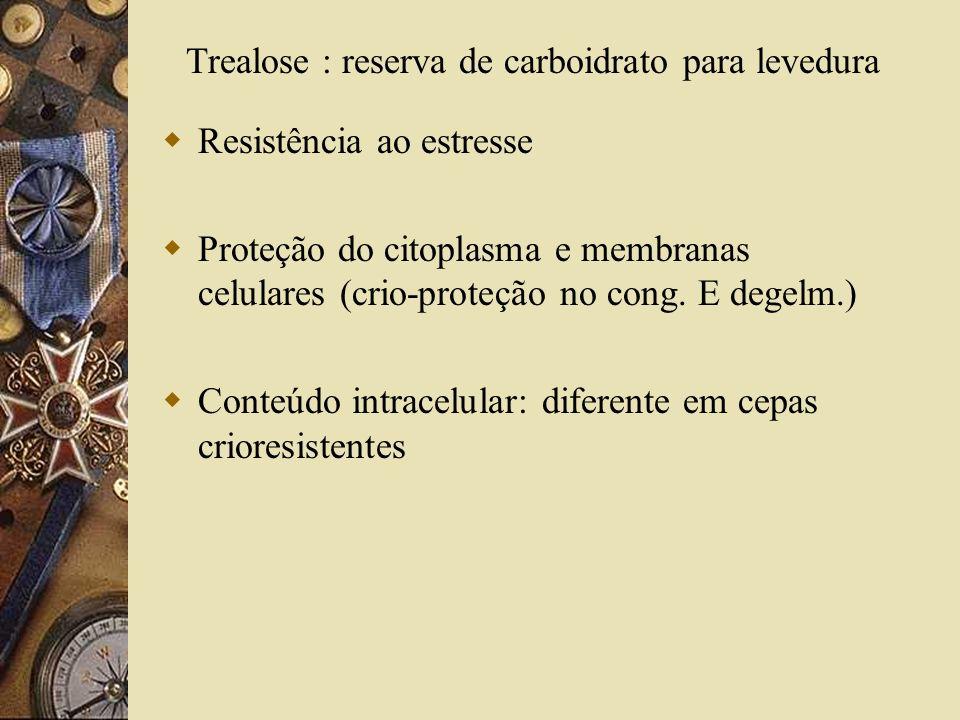 Resistência ao estresse Proteção do citoplasma e membranas celulares (crio-proteção no cong. E degelm.) Conteúdo intracelular: diferente em cepas crio