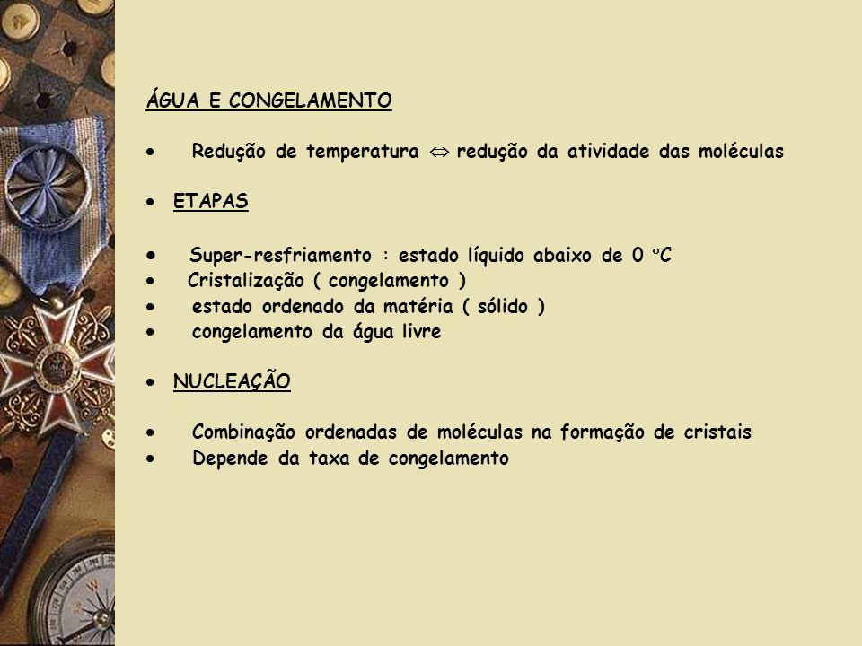 MINI-FREEZER CRIOGÊNICO POSIÇÃO DOS TERMOPARES NO INTERIOR DA CÂMARA CRIOGÊNICA