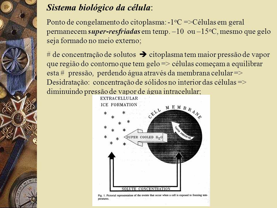Observações Microscópicas(SEM): -Dano induzido pelos cristais de gelo na rede protéica=>rompimento&tempo de estocagem e ciclos de cong.