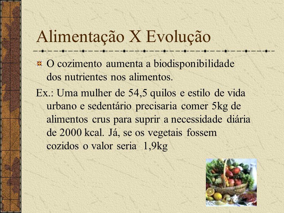 Alimentação X Evolução O cozimento aumenta a biodisponibilidade dos nutrientes nos alimentos. Ex.: Uma mulher de 54,5 quilos e estilo de vida urbano e