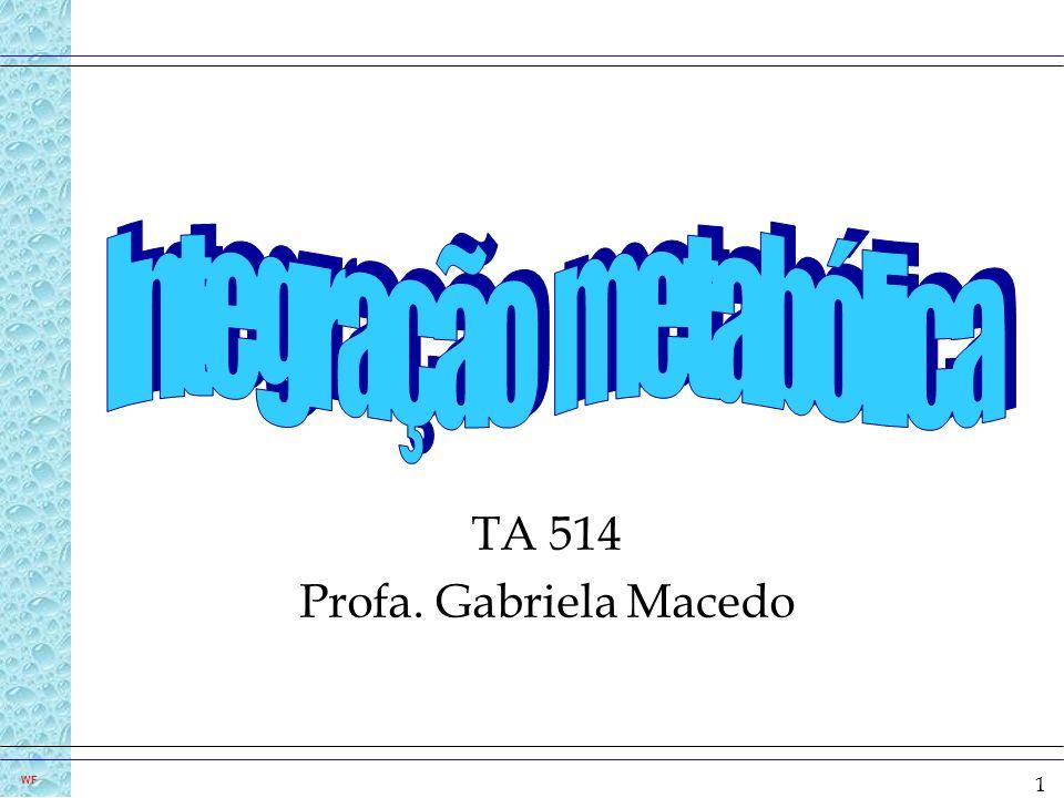 1 WF TA 514 Profa. Gabriela Macedo