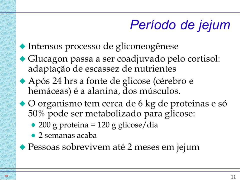 11 WF Período de jejum u Intensos processo de gliconeogênese u Glucagon passa a ser coadjuvado pelo cortisol: adaptação de escassez de nutrientes u Ap