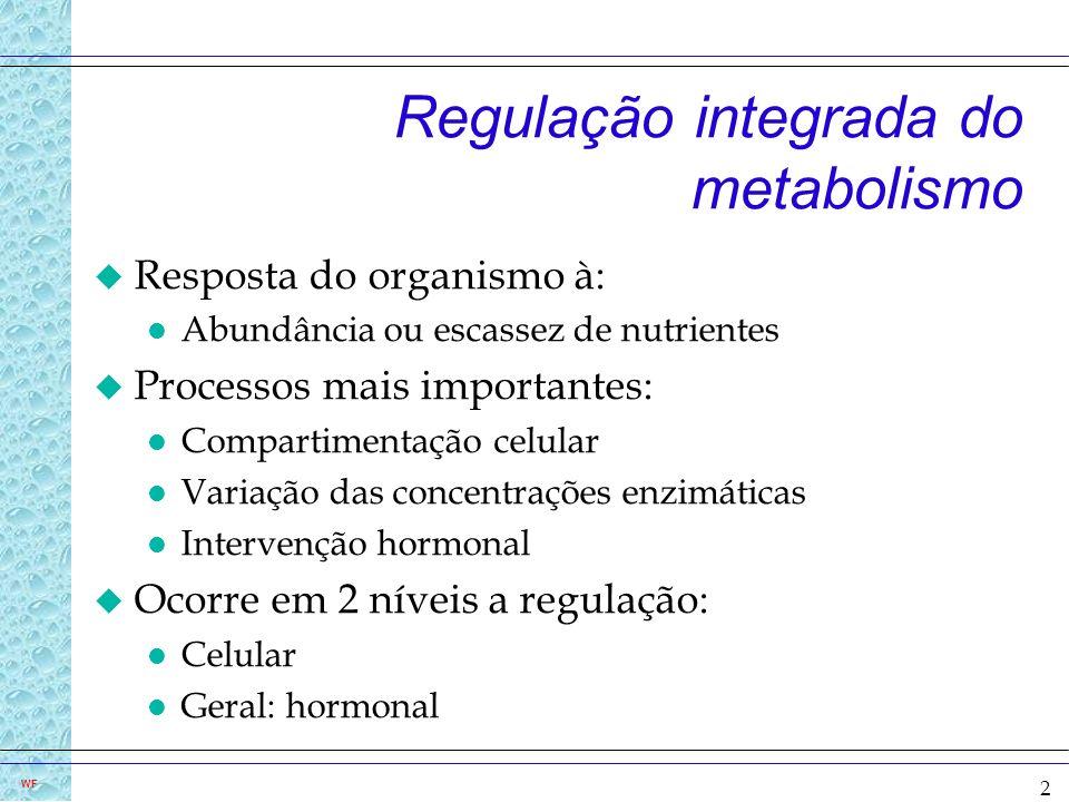 3 WF Concentração das enzimas varia com a oferta de nutrientes u Abundância : o substrato e/ou hormônio (insulina) induzem à síntese de enzimas da vias catabólicas u Escassez : glucagon e cortisol inibem a síntese de enzimas catabólicas e induem as enzimas de degradação: gluconeogênese