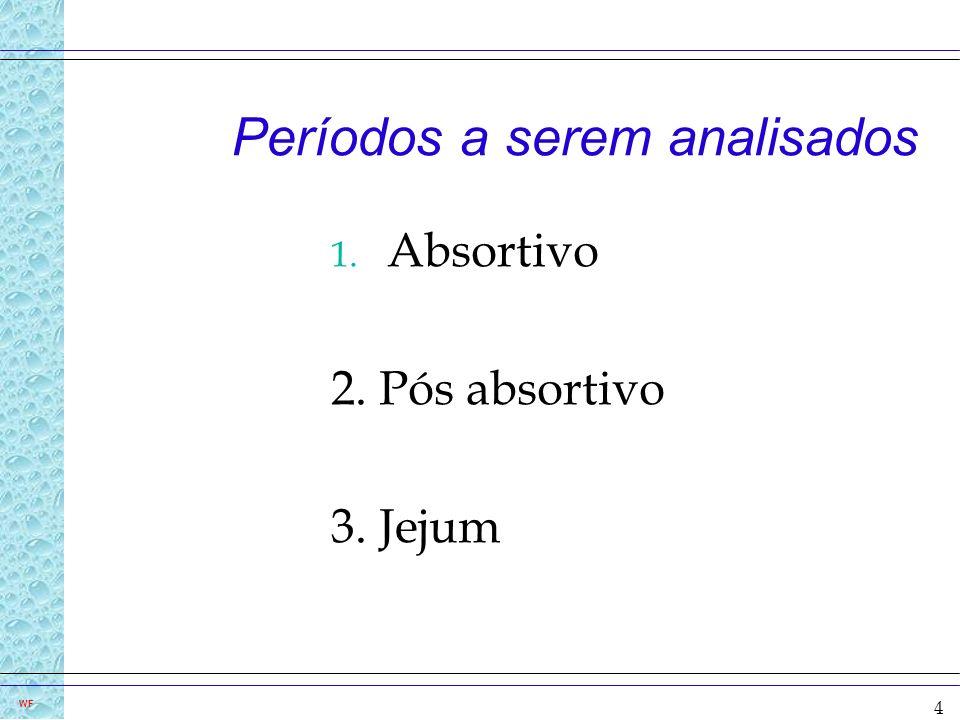 4 WF Períodos a serem analisados 1. Absortivo 2. Pós absortivo 3. Jejum