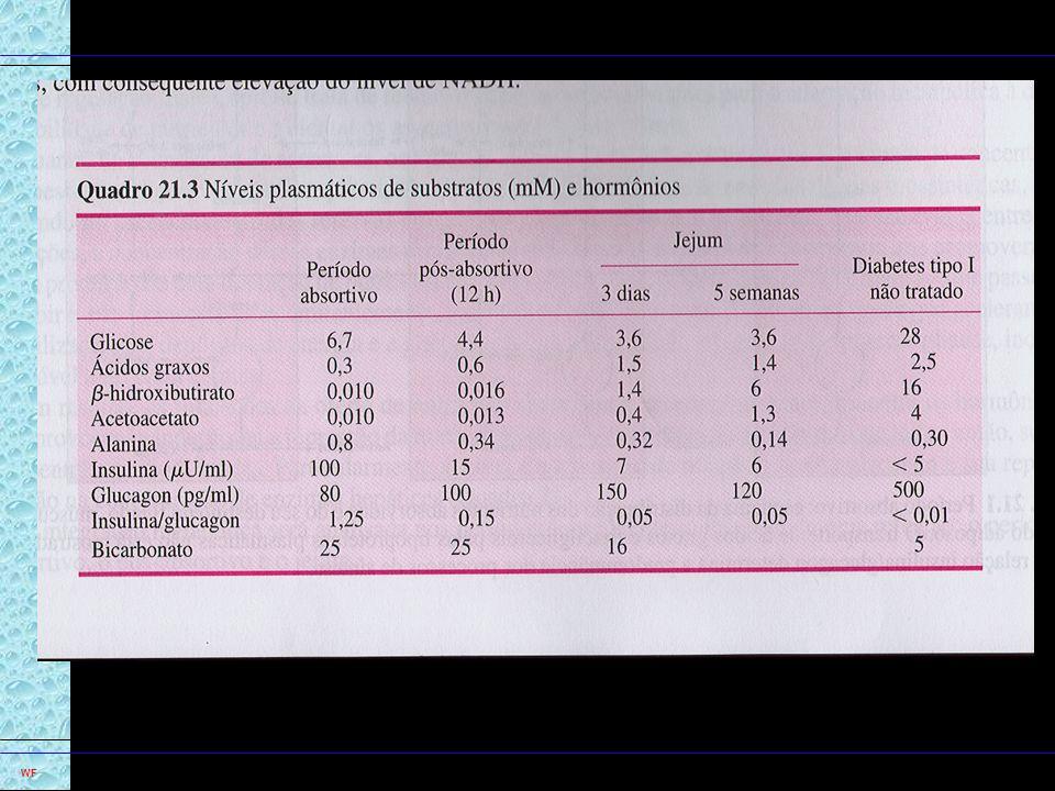 8 u Acetil CoA, acelera o Ciclo Krebs e aumenta taxa de NADH e FADH 2 u Estímulo da Cadeia Resp e Fosforilação, ATP.
