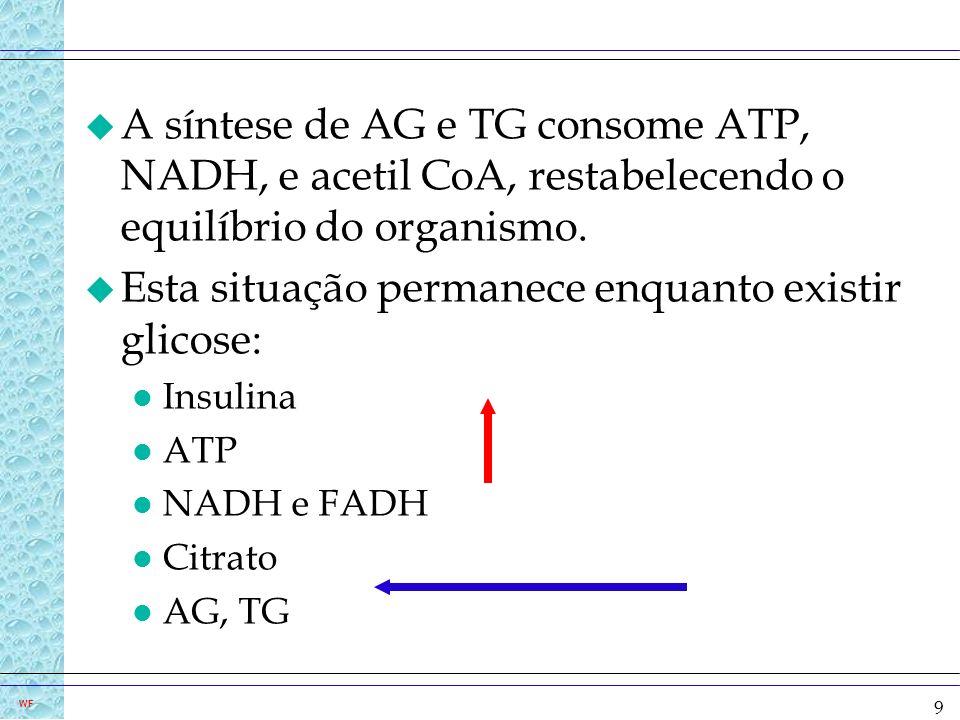 9 WF u A síntese de AG e TG consome ATP, NADH, e acetil CoA, restabelecendo o equilíbrio do organismo. u Esta situação permanece enquanto existir glic