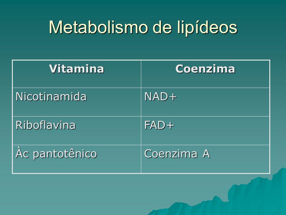 Metabolismo de lipídeos VitaminaCoenzima NicotinamidaNAD+ RiboflavinaFAD+ Àc pantotênico Coenzima A