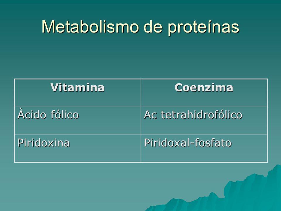Metabolismo de proteínas VitaminaCoenzima Àcido fólico Ac tetrahidrofólico PiridoxinaPiridoxal-fosfato