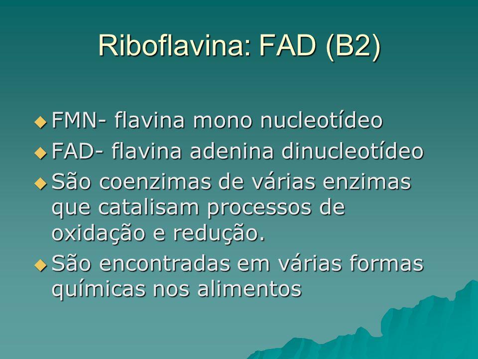 Riboflavina: FAD (B2) FMN- flavina mono nucleotídeo FMN- flavina mono nucleotídeo FAD- flavina adenina dinucleotídeo FAD- flavina adenina dinucleotíde