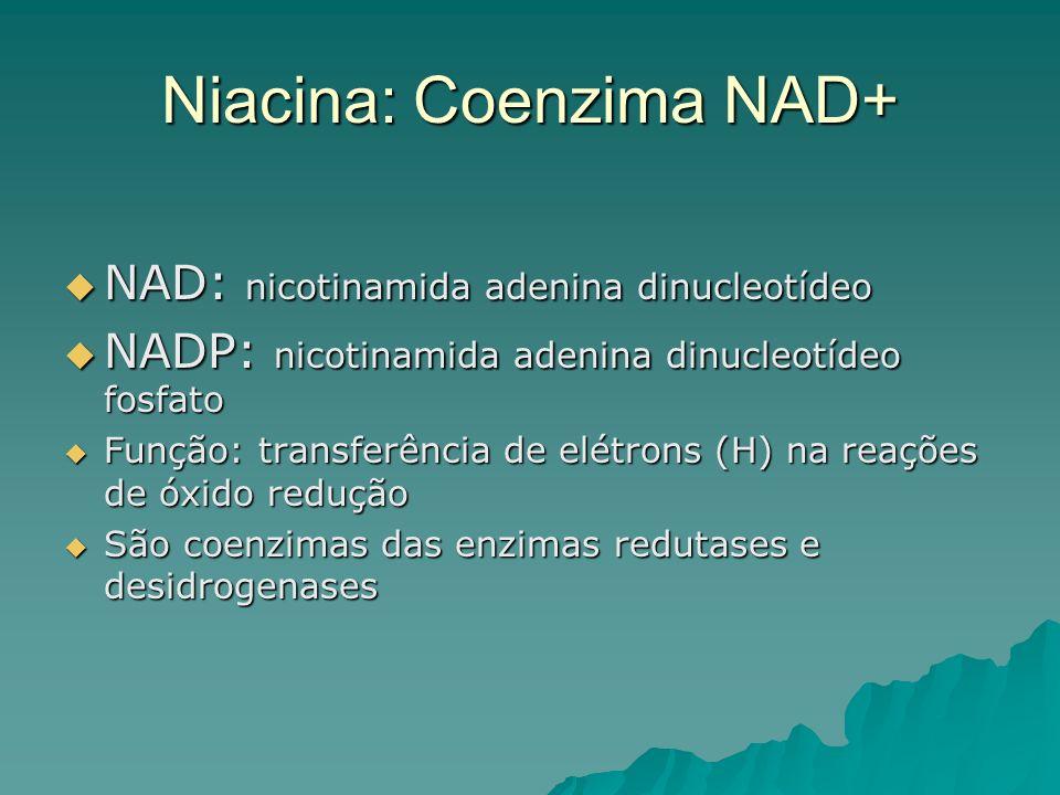 Niacina: Coenzima NAD+ NAD: nicotinamida adenina dinucleotídeo NAD: nicotinamida adenina dinucleotídeo NADP: nicotinamida adenina dinucleotídeo fosfat