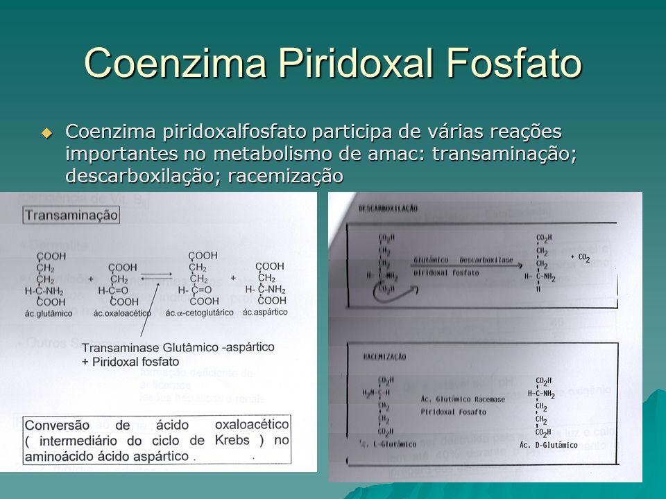 Coenzima Piridoxal Fosfato Coenzima piridoxalfosfato participa de várias reações importantes no metabolismo de amac: transaminação; descarboxilação; r