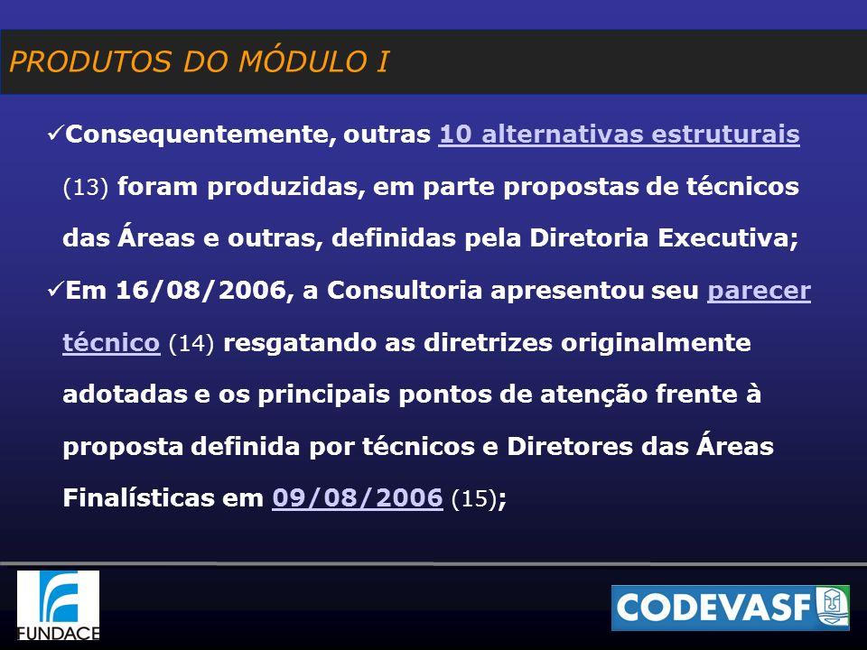 Consequentemente, outras 10 alternativas estruturais (13) foram produzidas, em parte propostas de técnicos das Áreas e outras, definidas pela Diretoria Executiva;10 alternativas estruturais Em 16/08/2006, a Consultoria apresentou seu parecer técnico (14) resgatando as diretrizes originalmente adotadas e os principais pontos de atenção frente à proposta definida por técnicos e Diretores das Áreas Finalísticas em 09/08/2006 (15) ;parecer técnico09/08/2006 PRODUTOS DO MÓDULO I