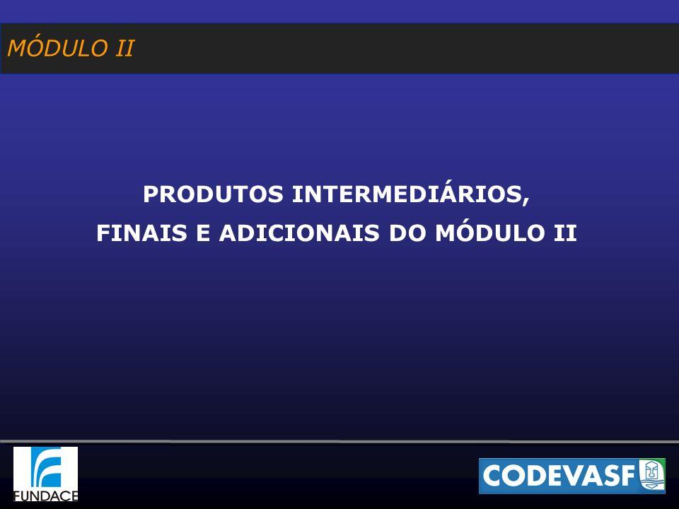 MÓDULO II PRODUTOS INTERMEDIÁRIOS, FINAIS E ADICIONAIS DO MÓDULO II