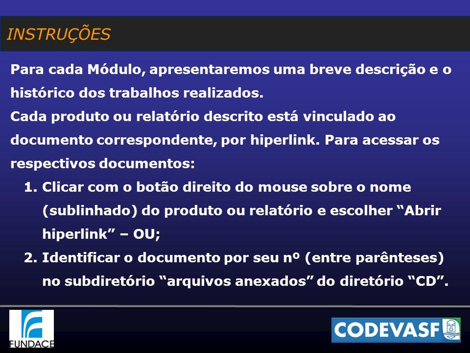 ATIVIDADES NÃO PREVISTAS NA METODOLOGIA INICIALMENTE CONTRATADA PARA DEFINIÇÃO DA NOVA ESTRUTURA ORGANIZACIONAL: De 11/08 a 01/09/2006, em decorrência de decisão da Presidência, foram modificadas as diretrizes orientadoras da estrutura organizacional, que já haviam sido validadas e aplicadas para a definição da macroestrutura; PRODUTOS DO MÓDULO I