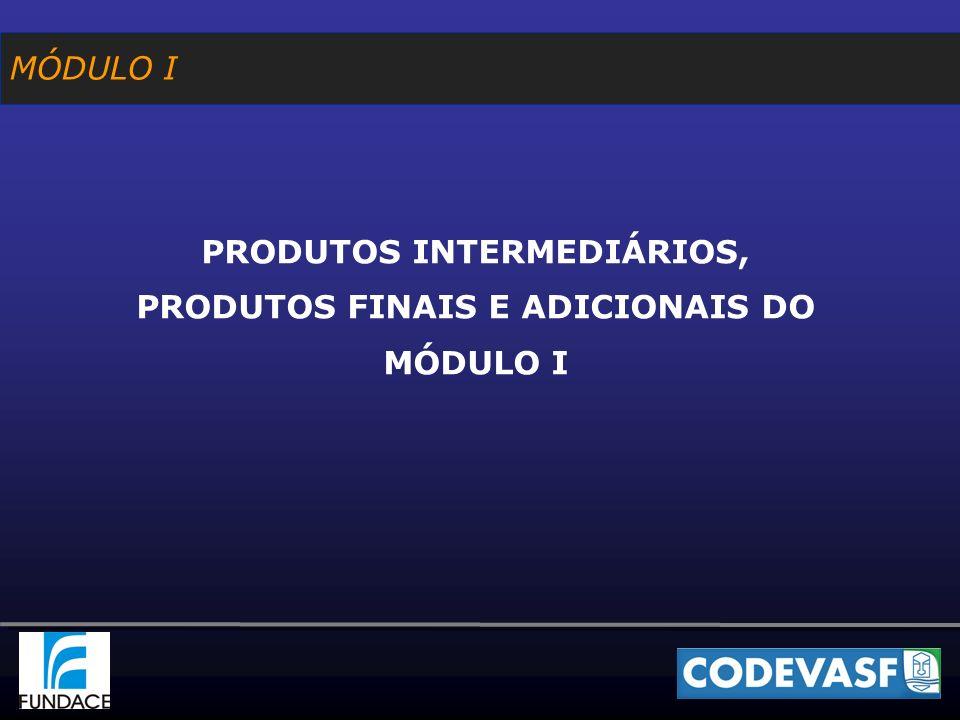 MÓDULO I PRODUTOS INTERMEDIÁRIOS, PRODUTOS FINAIS E ADICIONAIS DO MÓDULO I