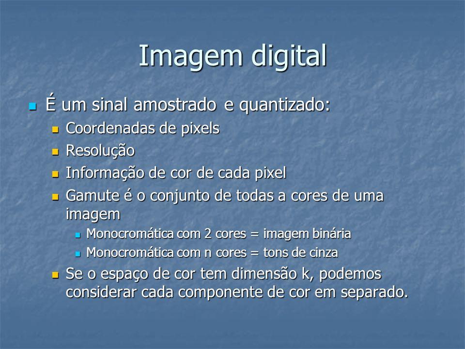 Imagem digital É um sinal amostrado e quantizado: É um sinal amostrado e quantizado: Coordenadas de pixels Coordenadas de pixels Resolução Resolução I