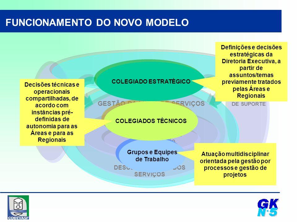 GESTÃO ESTRATÉGICA GESTÃO DAS ATIVIDADES DE SUPORTE informação, pessoas, recursos, gestão articulação e coordenação GESTÃO DA LINHA DE SERVIÇOS EXECUÇÃO DESCENTRALIZADA DOS SERVIÇOS Grupos e Equipes de Trabalho Grupos e Equipes de Trabalho COLEGIADOS TÉCNICOS COLEGIADO ESTRATÉGICO Decisões técnicas e operacionais compartilhadas, de acordo com instâncias pré- definidas de autonomia para as Áreas e para as Regionais Definições e decisões estratégicas da Diretoria Executiva, a partir de assuntos/temas previamente tratados pelas Áreas e Regionais Atuação multidisciplinar orientada pela gestão por processos e gestão de projetos FUNCIONAMENTO DO NOVO MODELO
