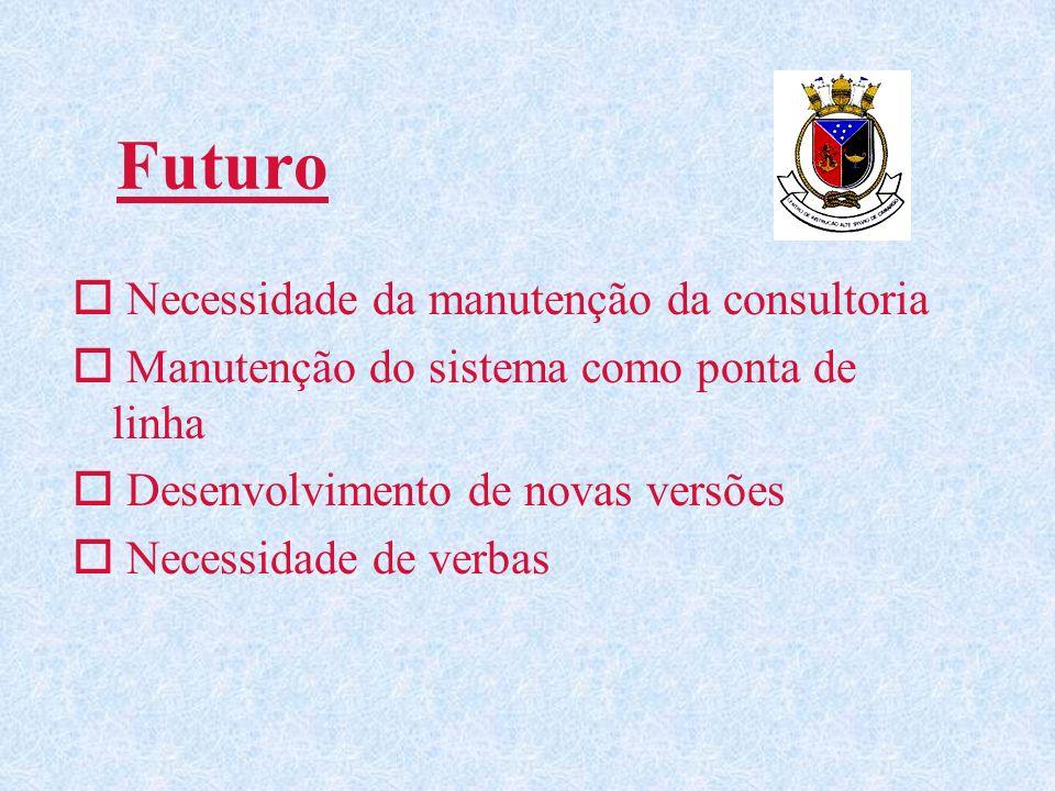 Futuro o Necessidade da manutenção da consultoria o Manutenção do sistema como ponta de linha o Desenvolvimento de novas versões o Necessidade de verb