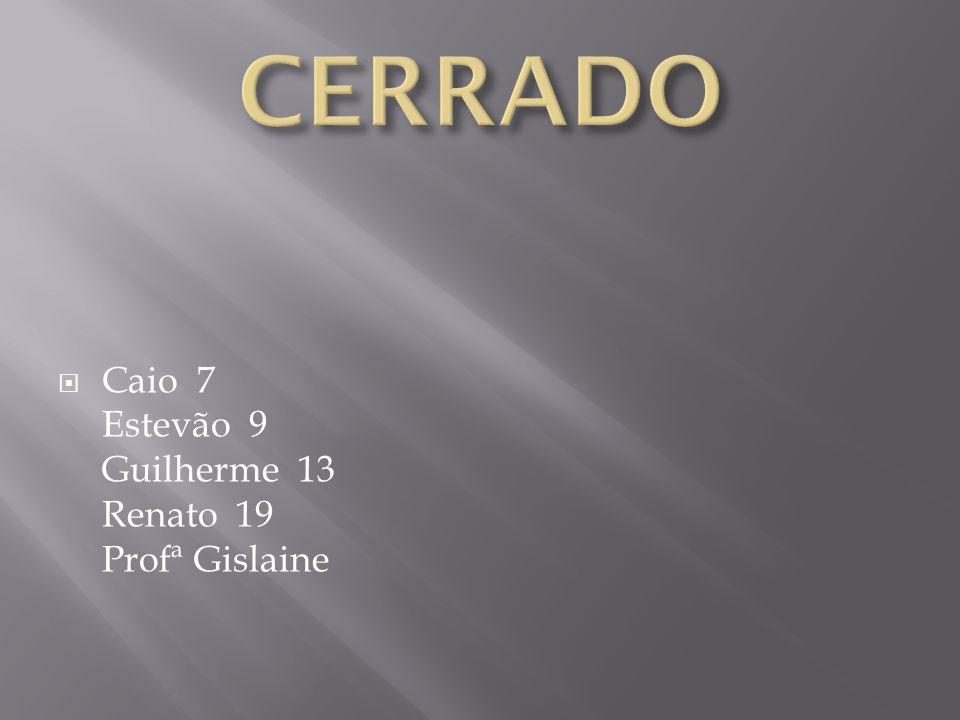 Caio 7 Estevão 9 Guilherme 13 Renato 19 Profª Gislaine