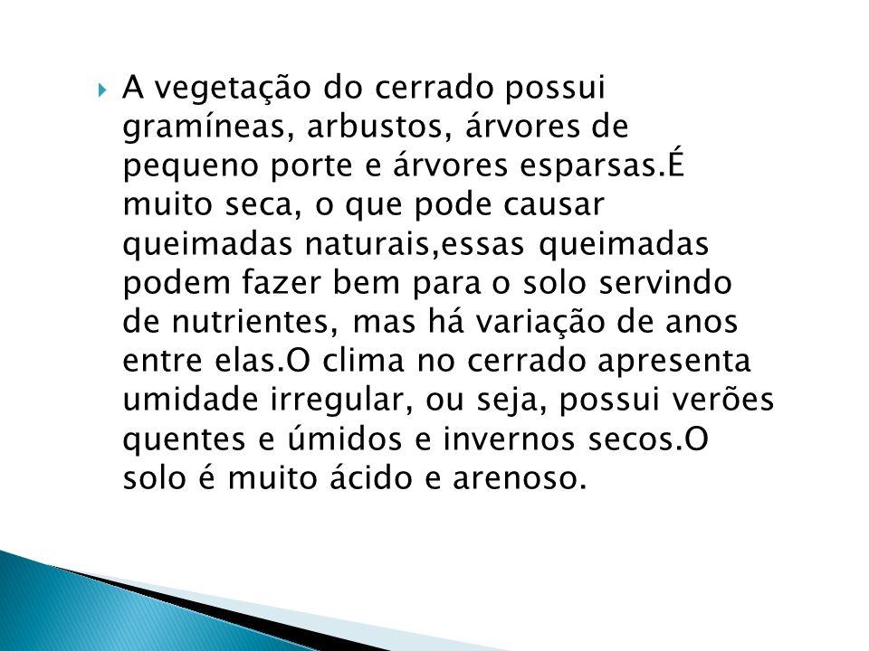 O cerrado recebe o apelido de savana brasileira,por ser,o mesmo bioma, mas com nomes diferentes.