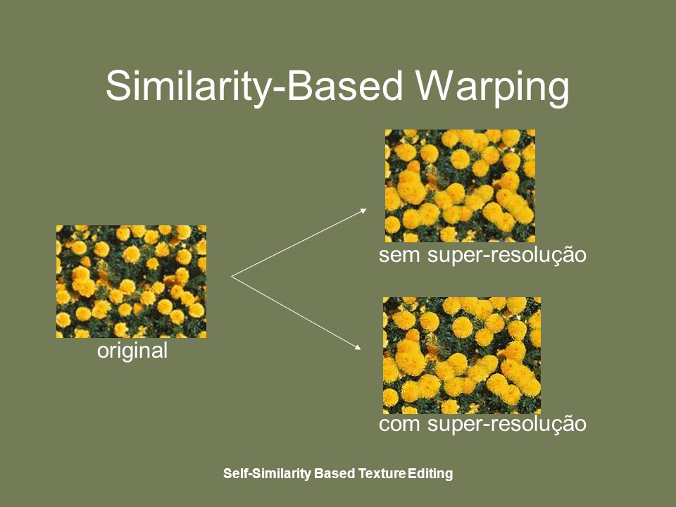 Self-Similarity Based Texture Editing Similarity-Based Warping original sem super-resolução com super-resolução