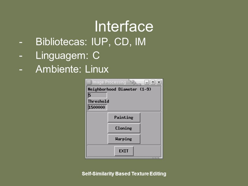 Self-Similarity Based Texture Editing Interface -Bibliotecas: IUP, CD, IM -Linguagem: C -Ambiente: Linux