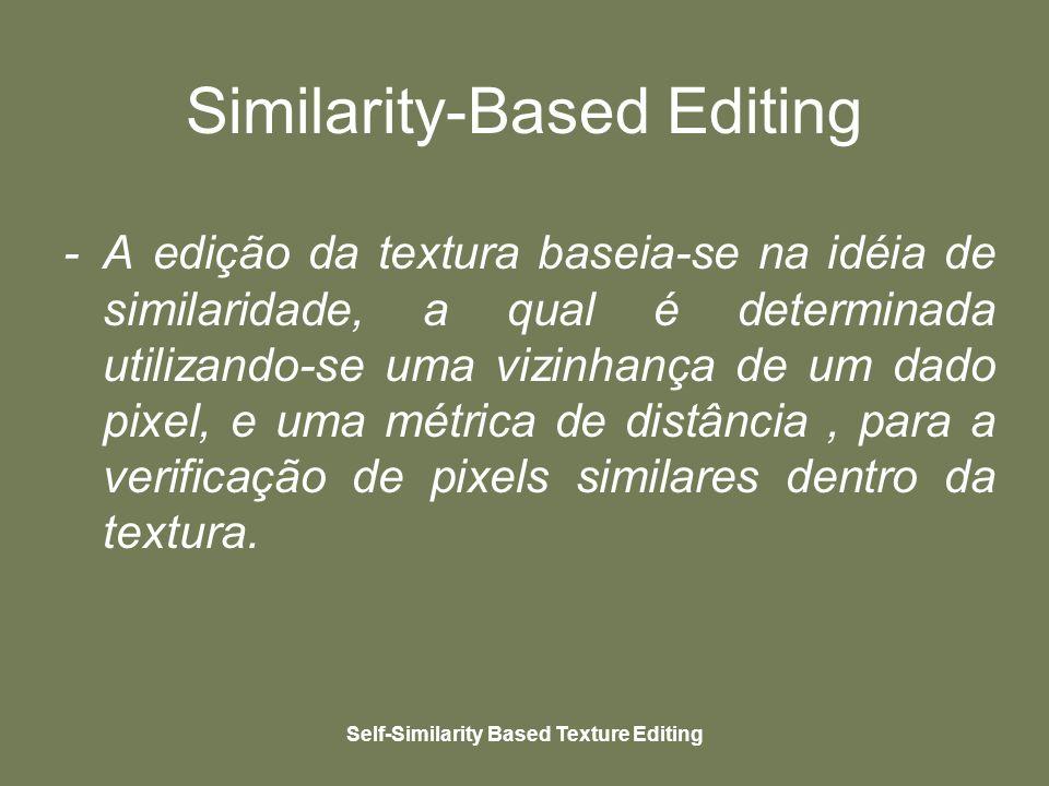 Self-Similarity Based Texture Editing Similarity-Based Editing - A edição da textura baseia-se na idéia de similaridade, a qual é determinada utilizando-se uma vizinhança de um dado pixel, e uma métrica de distância, para a verificação de pixels similares dentro da textura.